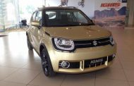 Maruti Suzuki Ignis Gold Color Spotted - Could It Be Launched Soon?