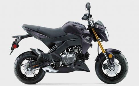 2021 Kawasaki Z125 Pro (1)