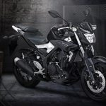 Yamaha MT 03 India (8)